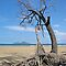 Dunk Island from North Mission Beach by STHogan