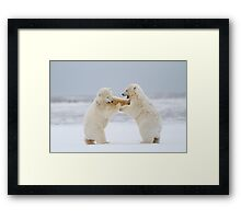 Rock 'Em, Sock 'Em Polar Bears Framed Print
