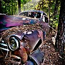 """It's Been A Ride"" - old automobile in woods by John Hartung"