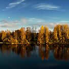 Autumn in Oulu by Dominika Aniola