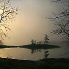 """  Sun Up  "" by fortner"