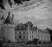 French Castle by dury