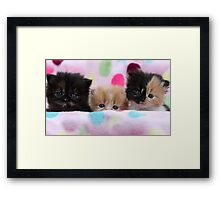 We're awake from hypersleep and ready for action! Framed Print