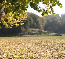 Kaona in Autumn - 3 by branko stanic