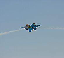 Blue Angels by Buckwhite