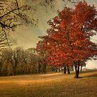Down Fall by Angela King-Jones