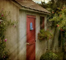 Garden Shed by Robin Webster