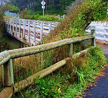 Oregon Fence....Cape Perpetua, Yachats, Oregon by trueblvr