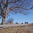 Gettysburg Devil's Den by purplefoxphoto