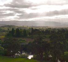 Macquarie Plains Panorama - Tasmania by Odille Esmonde-Morgan