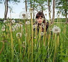 Beauty girl in meadow. by fotorobs