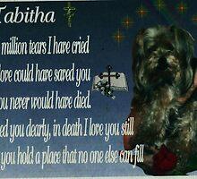 Tabitha By Norma-Jean by Norma-jean Morrison