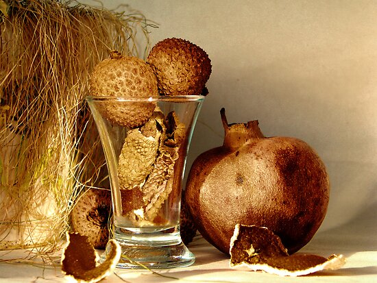 Autumn still life by JuliaPaa