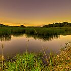 Amazing Water Sunset by Sergey Kalashnik