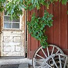 Grandpa's Old Shed © by jansnow