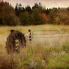 Rural Fence by Lynnette Peizer