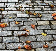 Cobblestone Autumn, New York City  by Alberto  DeJesus
