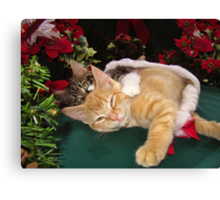 Cheshire Cat Grin ~ Cute Kittens in Love ~ Christmas Kitties in a Santa Hat Lying Down w/ Paws Stretched Out Canvas Print