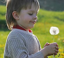 Boy in dandelion meadow. by fotorobs