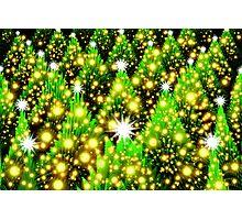 Christmas Tree Heaven II Photographic Print