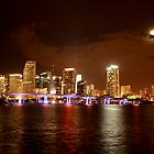 MIAMI the city by Christian Alexander