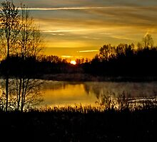 Sunrise over the Pond - AB Canada by Jessica Karran