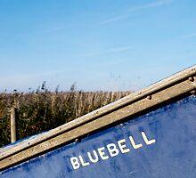 Bluebell by marc melander