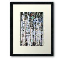 Light Up The Trees Framed Print