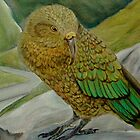 Kea by fionamcdonald