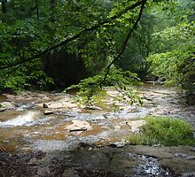 Elder Mill Creek by writerga07