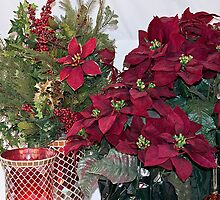 Holiday - Christmas Multiple Poinsetta Arrangements by Sherry Hallemeier
