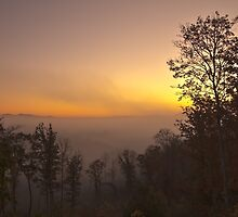 Smoky Mountain Foggy Sunrise by Shane Jones
