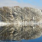Winter Reflections 2  by Marijane  Moyer
