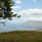 Breathtaking Maui View by Katie Grove-Velasquez