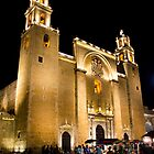 Cathedral of San Ildefonso by Dean Cunningham