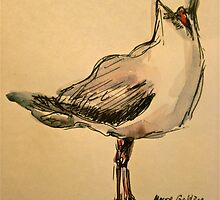 Here's looking at you. Pen and wash by Elizabeth Moore Golding
