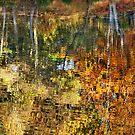 Autumnal Reflections II by Natalie Kinnear