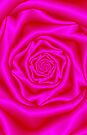 Pink Rose Spiral by Objowl