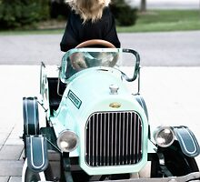 Norwich Terrier Plays Soccer Mom  by susan stone