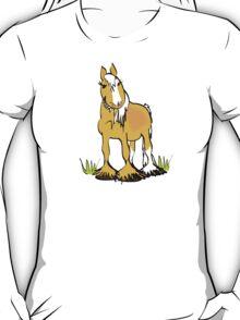 Welsh B pony tee T-Shirt