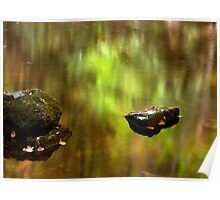 Early Autumn Reflections Poster