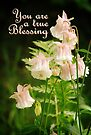 True Blessing (Card) by Tracy Friesen