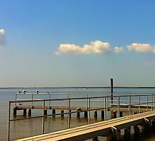 COURTNEY CAMPBELL CAUSEWAY; Tampa Florida by Mikaela Fox