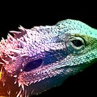 Bearded Dragon -  Rainbow Dragon by mandyemblow