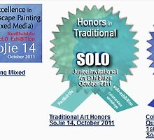 Sojie 14 Awards (History Rocks) by Eddy Aigbe