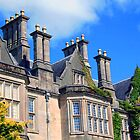 Muckross House, Ireland by aquinnahimages