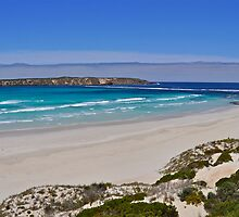 Almonta Beach and Golden Island by Ian Berry