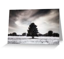 Winter in Elveden Greeting Card