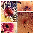 Flower collage by RiannAmelia