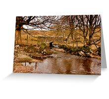 By a Babbling Brook Greeting Card
